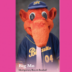 Real Men Wear Pink- Big Mo